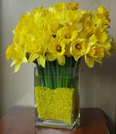 Les Saisons - Page 37 Daffodils_lg